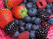 Nutrition fruits