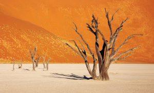 Xerostomia desert